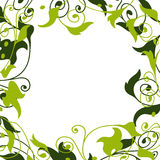 Ornament (vector) Stock Afbeeldingen