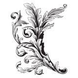 Ornament vector baroque stock illustration