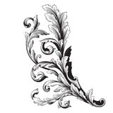Ornament vector baroque. Vintage baroque frame scroll ornament engraving border floral retro pattern antique style acanthus foliage swirl decorative design Stock Images