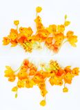 Ornament of yellow flowers Stock Photos
