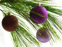 Ornament4. Christmas ornaments on pine bough Royalty Free Stock Image