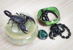 A ornamentação das mulheres com escorpião foto de stock