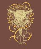 Ornamentacyjna smok czaszka ilustracja wektor