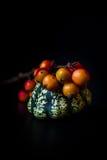Ornamentacyjne dyniowe i czerwone jagody Zdjęcia Royalty Free
