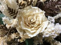 Ornamentacyjne rośliny w centrum handlowym Zdjęcie Royalty Free