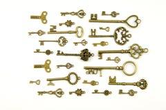 Ornamentacyjni średniowieczni roczników klucze z w zawiły sposób skuciem, komponującym lis elementy, wiktoriański liścia ślimaczn Zdjęcie Royalty Free