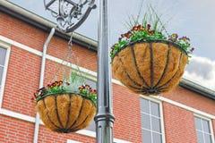 Ornamentacyjni flowerpots Obrazy Stock