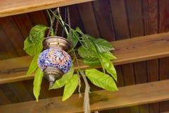 Ornamentacyjni Sigacik Izmir, Turcja - Fotografia Stock