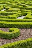 Ornamentacyjny ogród Obrazy Royalty Free