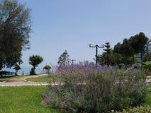 Ornamentacyjny ogród w Barranco okręgu Lima Obrazy Royalty Free