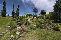 ornamental сада Стоковое Изображение