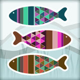 Ornamental aquarium fishes Stock Photo
