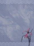 Ornamental background 02 Stock Image