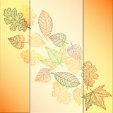 Ornamental background with art autumn leaves. Royalty Free Stock Image
