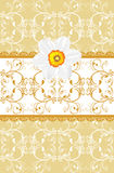 Ornamental background with daffodil Stock Photography