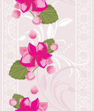Ornamental background with lace and pink flowers Stock Images