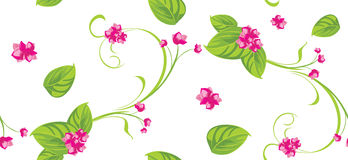 Ornamental background with pink flowers Royalty Free Stock Image