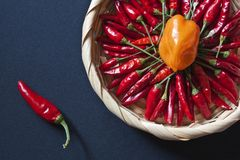 Ornamental basket with red and yellow chillies Stock Photography
