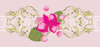 Ornamental border with blooming pink flower Stock Photo