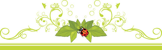 Ornamental border with ladybird and green leaves Royalty Free Stock Photography