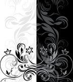 Ornamental borders for decor. Illustration Stock Photography