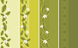 Ornamental borders with white flowers Royalty Free Stock Photo