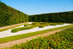 Ornamental bushes in French garden on sunny summer day Stock Images