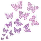 Ornamental butterflies. Royalty Free Stock Photos