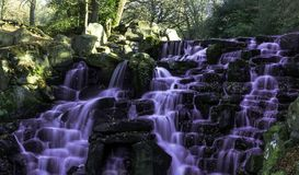 The Ornamental Cascade waterfall with purple water in Virginia Water, Surrey, UK. The Ornamental Cascade waterfall with purple water in Virginia Water, Surrey Royalty Free Stock Photo
