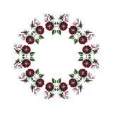 Ornamental circle frame Stock Photos