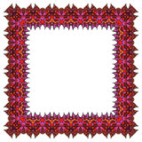 Ornamental colorful frame Royalty Free Stock Image