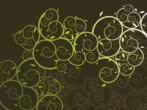 Ornamental curly vine pattern Royalty Free Stock Image