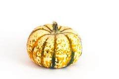 Ornamental or decorative gourd Stock Photo
