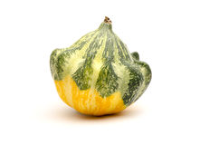 Ornamental decorative pumpkin Stock Photography