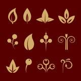 Ornamental design floral elements set Royalty Free Stock Image