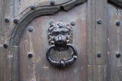 Ornamental door knocker Stock Photography