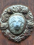 Ornamental door plaque with lion head in centre and vines around on historical door in Banska Stiavnica, Slovakia Royalty Free Stock Images