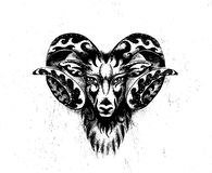 Ornamental drawing of Aries, sacred animal symbol. Ornamental drawing of Aries, sacred animal symbol royalty free stock image