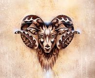 Ornamental drawing of Aries, sacred animal symbol. Ornamental drawing of Aries, sacred animal symbol royalty free stock images