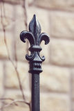 Ornamental fence finial Royalty Free Stock Photography