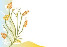 Ornamental Flower. Stock Photo
