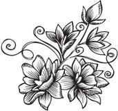 Ornamental Flower Bouquet Vector Illustration. Black and White Ornamental Floral Vector Illustration Stock Photo
