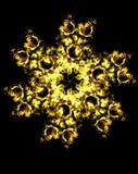 Ornamental flower mandala. Rose collage. Gold flower on black background. Stock Images