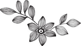 Ornamental Flower Vector Illustration. Black and White Ornamental Flower Vector Illustration Royalty Free Stock Photography