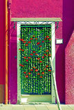 Ornamental flowers curtain at the entrance of a house stock image