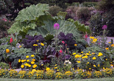 Ornamental flowers garden bed. Ornamental garden bed with perennial and annual flowers with some decorative vegetable plants Stock Image