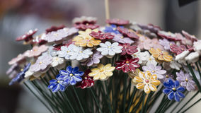 Ornamental flowers Royalty Free Stock Photos
