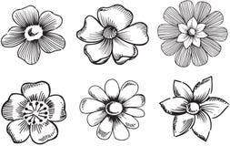 Ornamental Flowers Vector Illustration. Black and White Ornamental Floral Vector Illustration Royalty Free Stock Photo