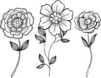 Ornamental Flowers Vector Illustration. Black and White Ornamental Flowers Vector Illustration Royalty Free Stock Photos