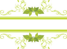 Ornamental frame with green leaves. Illustration Stock Photography